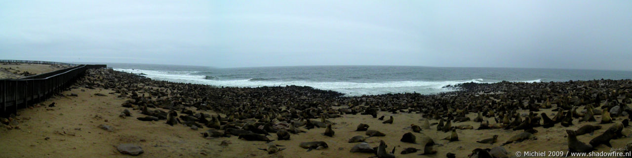 seal panorama seal, Cape Cross, Skeleton Coast, Namibia, Africa 2011,travel, photography,favorites, panoramas