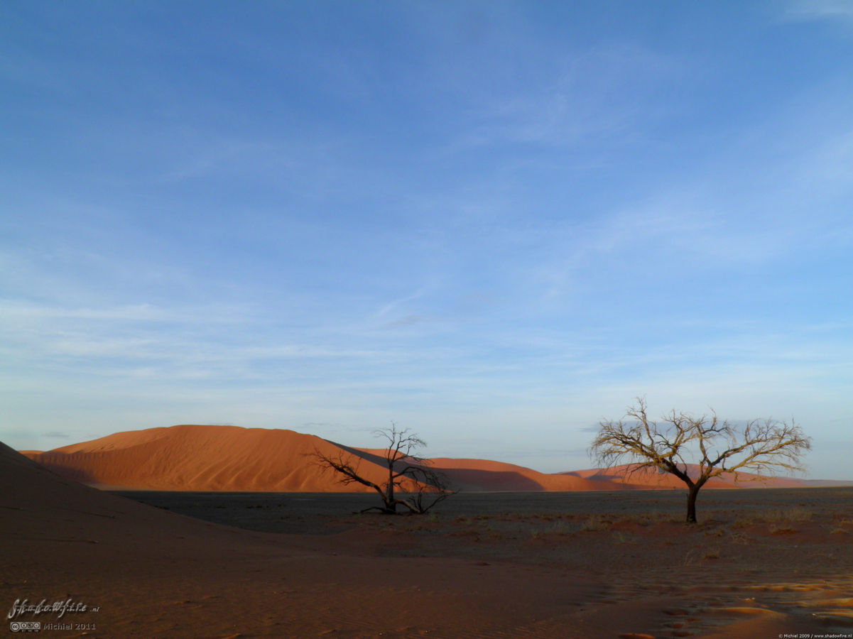 Dune 45, The Sand Dune Sea, Namib Desert, Namibia, Africa 2011,travel, photography,favorites
