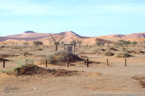 The Sand Dune Sea, Namib Desert, Namibia, Africa 2011,travel, photography