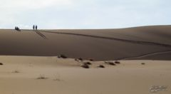 Dead Vlei, The Sand Dune Sea, Namib Desert, Namibia, Africa 2011,travel, photography,favorites