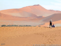 Dead Vlei, The Sand Dune Sea, Namib Desert, Namibia, Africa 2011,travel, photography