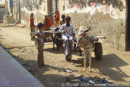 Ramgarh, Shekhawati, Rajasthan, India, India 2009,travel, photography,favorites