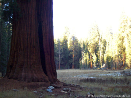Big Trees Trail, Giant Forest, Sequoia NP, California, United States 2008,travel, photography