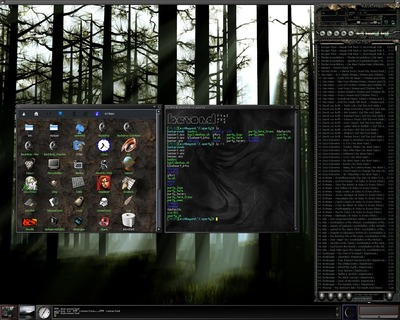 Linux Enlightenment DR16 desktop desktops,screenshots